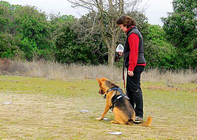 Training with Durán