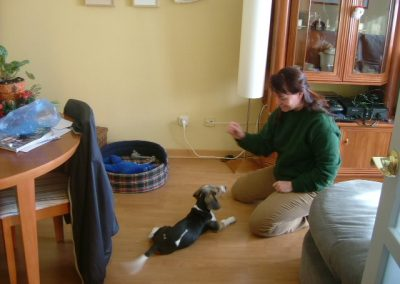Home training with Odin